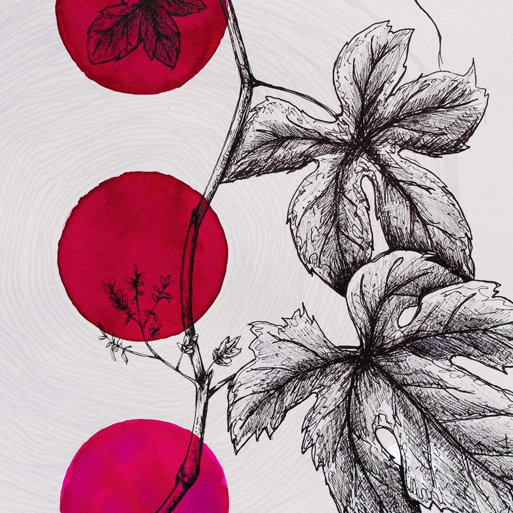 etichetta nuovo vino design fabio petani